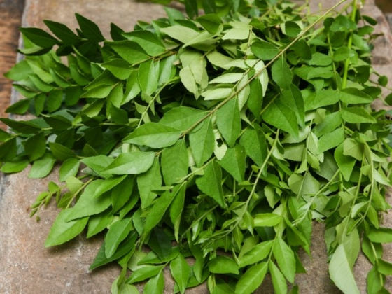 Weight loss to hair growth, 5 hidden benefits of Curry leaves that will leave you amazed