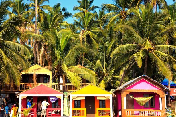 When visiting Goa, don't miss out on these 5 local markets for shopping
